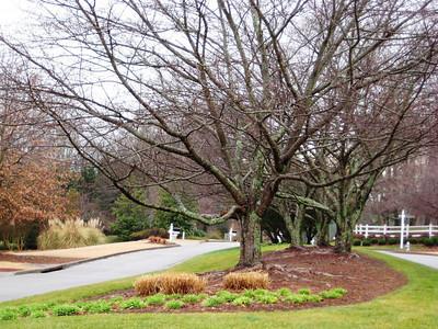 Kensington Farms Milton GA Neighborhood (3)