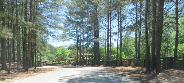 Knox Landing Milton GA Neighborhood (4)
