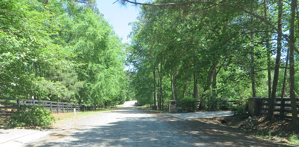 Knox Landing Milton GA Neighborhood (5)