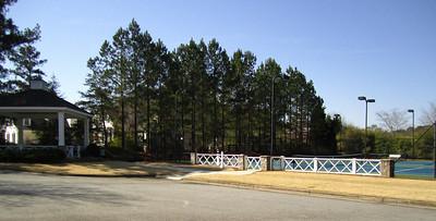 Lake At Cooper Sandy Estate Homes (9)