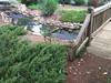 Lake Laurel Neighborhood Of Homes-Milton GA (15)