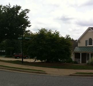Lake Laurel Neighborhood Of Homes-Milton GA (6)