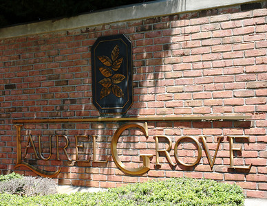 Milton GA Laurel Grove Neighborhood Of Homes (7)