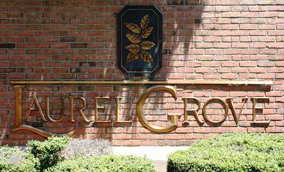 Milton GA Laurel Grove Neighborhood Of Homes (9)