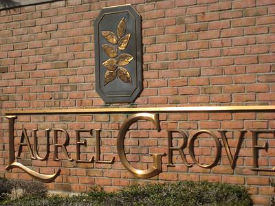 Milton GA Laurel Grove Neighborhood Of Homes (1)