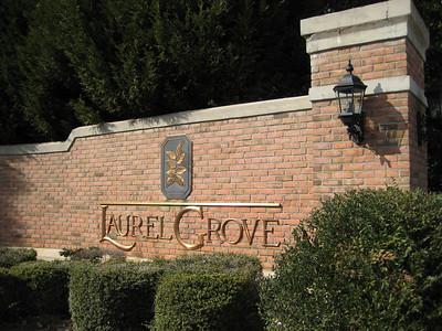 Milton GA Laurel Grove Neighborhood Of Homes (2)