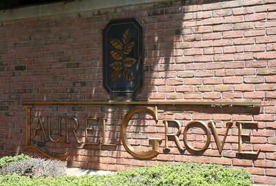 Milton GA Laurel Grove Neighborhood Of Homes (8)