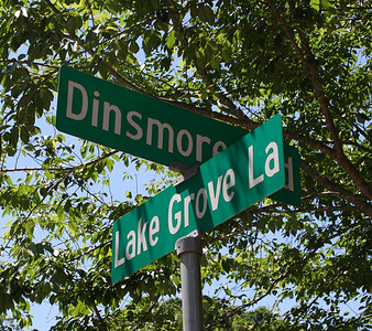 Milton GA Laurel Grove Neighborhood Of Homes (12)