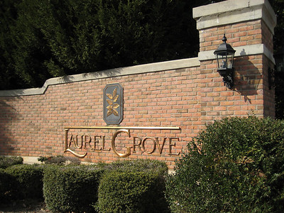Milton GA Laurel Grove Neighborhood Of Homes (3)