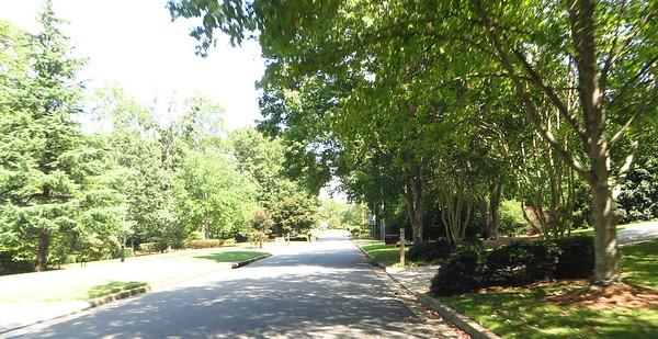 Laurel Grove Milton GA Subdivision Of Homes (2)