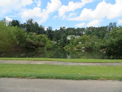 Milton GA Subdivision Marshalls Pond (6)