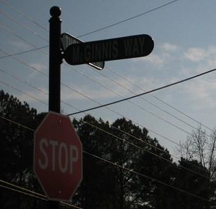 McGinnis Farm Community-Milton GA (15)