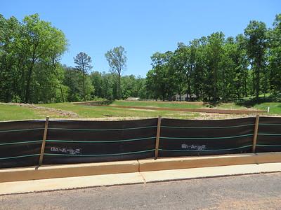 Milton Crossing New Subdivision On Freemanville (29)