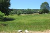 Milton Crossing New Subdivision On Freemanville (28)