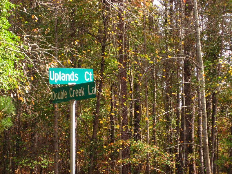 Crabapple Forest Milton Georgia Community (15)