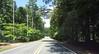Dinsmore Road Milton North Valley Area (1)
