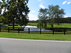 Dinsmore Road Milton North Valley Area (7)