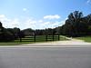 Dinsmore Road Milton North Valley Area (17)