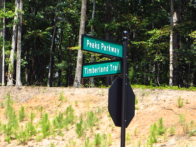 Northpoint Forest Milton GA Neighborhood (21)