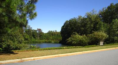 Oxford Lakes Milton GA (14)