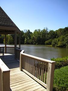 Oxford Lakes Milton GA (18)