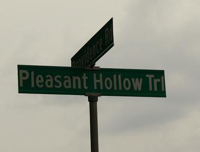 Pleasant Hollow Farms Estate Community-Alpharetta Milton 1 (18)