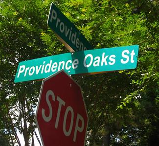 Providence Oaks Milton Georgia Community  (1)