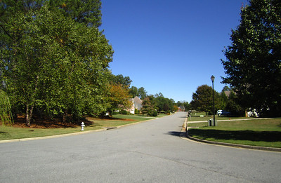 Providence Oaks Milton GA Neighborhood (16)