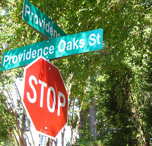 Providence Oaks Milton GA Community (3)