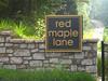 Red Maple Lane Enclave Of Homes  Milton Georgia (9)