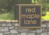 Red Maple Lane Enclave Of Homes  Milton Georgia (7)