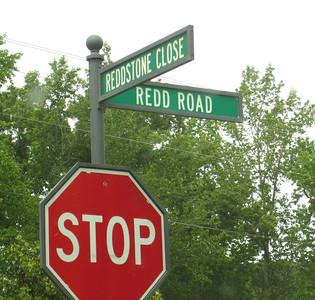Redd Stone Estate Homes Community Milton Georgia (35)