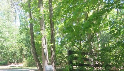 Ridgestone Estates Milton GA Enclave (4)