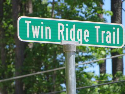 Ridgestone Estates Milton GA Enclave (8)