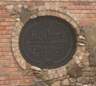 Roxbury Estates Community Of Homes Milton GA (3)