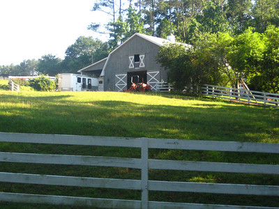 Sandy Creek Farm-Milton Georgia Community (16)