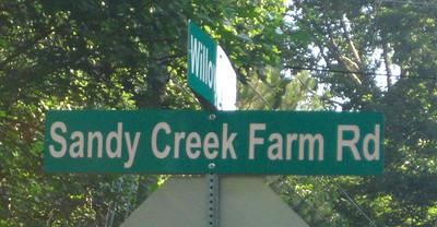 Sandy Creek Farm-Milton Georgia Community (17)