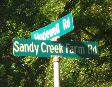 Sandy Creek Farm-Milton Georgia Community (9)