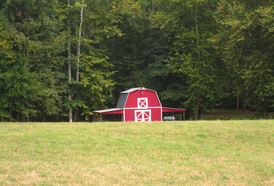 Shadowood Farms Milton GA Homes (4)