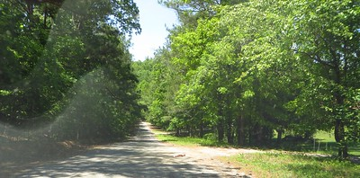Simmons Hill Milton GA Neighborhood (5)