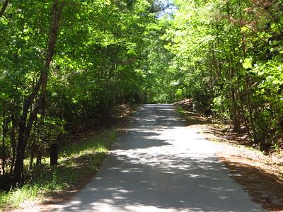 Simmons Hill Milton GA Neighborhood (13)