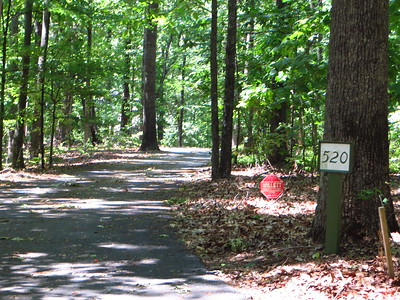 Simmons Hill Milton GA Neighborhood (20)