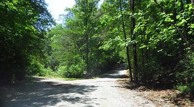 Simmons Hill Milton GA Neighborhood (11)