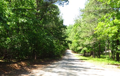Simmons Hill Milton GA Neighborhood (6)