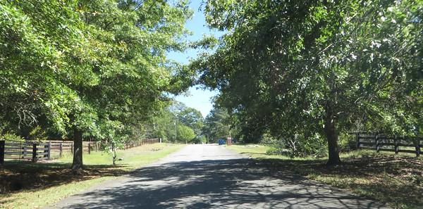 Southern Heritage Milton GA Subdivision (12)