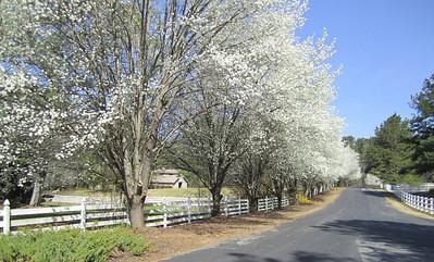 Sunnybrook Farms Equestirian Community 30004 (4)