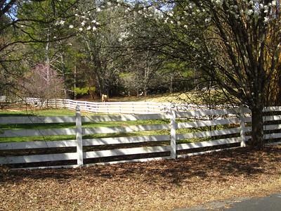 Sunnybrook Farms Equestirian Community 30004 (8)