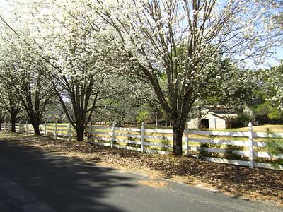 Sunnybrook Farms Equestirian Community 30004 (18)