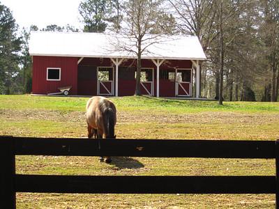 Sunnybrook Farms Equestirian Community 30004 (24)