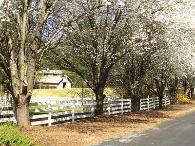 Sunnybrook Farms Equestirian Community 30004 (3)